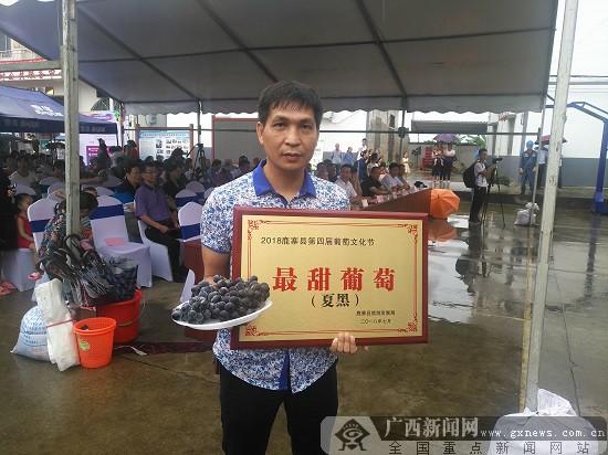 激情七月 瓜果瓢香 鹿寨县第四届葡萄文化节开幕