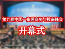 第九届中国―东盟商务与投资峰会开幕式
