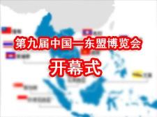 第九届中国―东盟博览会开幕式