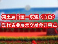 第五届中国―东盟(百色)现代农业展示交易会开幕式