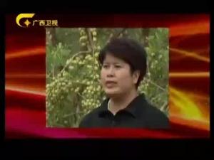 《广西出席十八大基层一线代表风采录》十八大代表 黄丹红