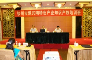 钦州举行知识产权培训