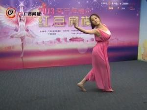 2013南宁房博会红豆房模选拔赛初赛