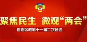 自治区政协十一届二次会议