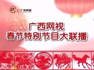 春节特别节目大联播