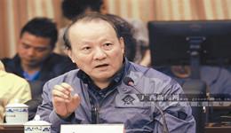 广西首部十二个世居民族音画(八桂大歌)升级版研讨会(一)