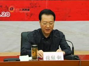 广西首部十二个世居民族音画(八桂大歌)升级版研讨会(三)