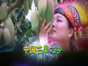 田东芒果广告宣传片