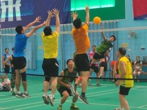 北海230名气排球爱好者赛场争锋