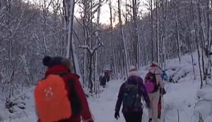穿越林海雪原 领略冰雪美景