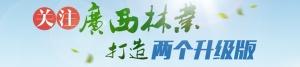 关注广西林业打造两个升级版