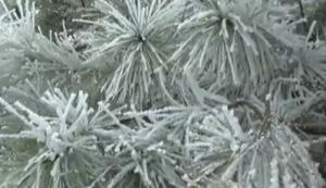 资源灵川:冰雪景观迎客来