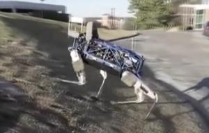 谷歌展示机器狗 被踹仍站立不倒