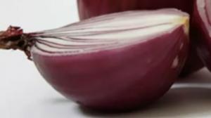 洋葱可吸收病菌?