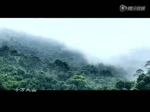 钦州:那山那水八寨沟