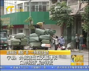 宁明:外贸进出口大幅增长 口岸经济蓄势待发
