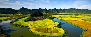 上林生态旅游养生节