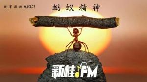 """故事漂流瓶:做人要有""""蚂蚁精神""""本份活着"""