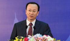 赵刚在中国—东盟信息港论坛:打击网络犯罪讨论会上发言