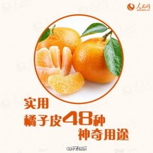 橘子皮48种神奇用途(中)