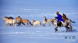 锡林郭勒马文化节:冰雪草原大赛马