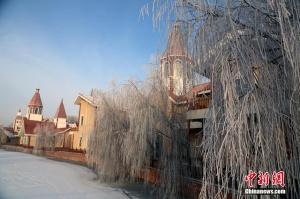 新疆伊犁河谷雾凇美景