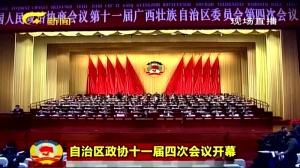 自治区政协十一届四次会议开幕3