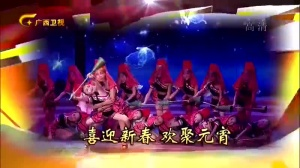 歌海元宵――广西文艺界新春电视联欢晚会