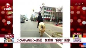 """小伙买马后没人愿送 在城区""""自驾""""回家"""