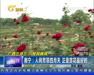 南宁:人间芳菲四月天 正是赏花最好时