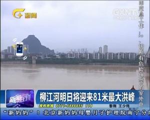 柳江河将迎来81米最大洪峰
