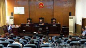 柳州鱼峰区法院开庭审理重大集资诈骗罪案