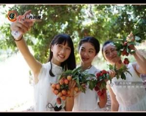 钦州灵山荔枝节 相约在夏日