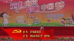 《幸福格桑花》柳州市柳城县实验小学