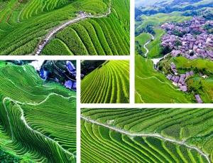 航拍:太美了!龙脊梯田绿波荡漾景色如画