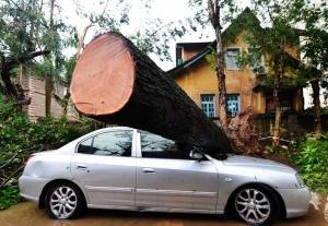 """台风""""莫兰蒂""""造成福建18人死亡、11人失踪"""
