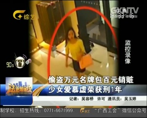 偷盗万元名牌包百元销赃少女爱慕虚荣获刑1年