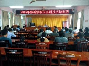 洋桥镇举办水稻、甘蔗种植技术培训班