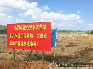 宏普吉时代三农精神扬大唐生物农业精华