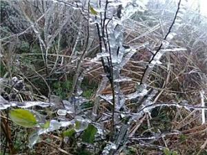 融水三江现冰挂 桂林入冬第一场雪(高清)