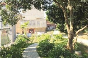 南宁村屯绿化带来新变化:种花又种果 美丽还创收