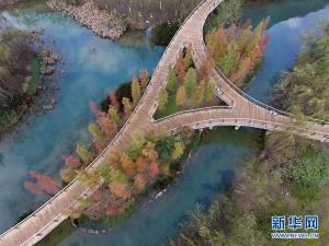 广西靖西:湿地公园冬日美