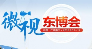 [手机版]2016微视东博会
