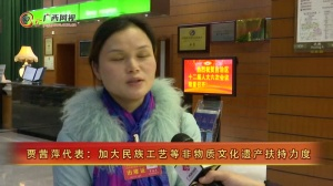 [我这一年]贾茜萍代表:加大民族工艺等非物质文化遗产扶持力度