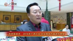 [我这一年]张树国委员:2016年广西工业 农业等方面进步明显