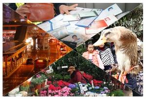 1月15日焦点图:南宁BRT计划1月25日试运营