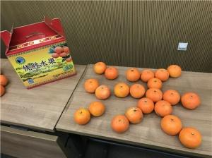灵山县供销社电子商务平台上线