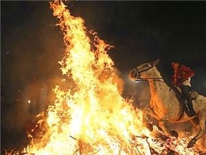 西班牙庆祝圣安东尼节(组图)