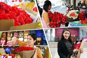 """高清图集:""""214""""情人节 且看玫瑰花的美丽蜕变"""