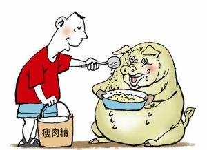 食药监部门教你辨别问题农产品 鉴别瘦肉精看猪油